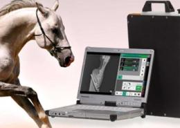Webwinnaar portfolio websites - Webdesign Veterinary Solutions
