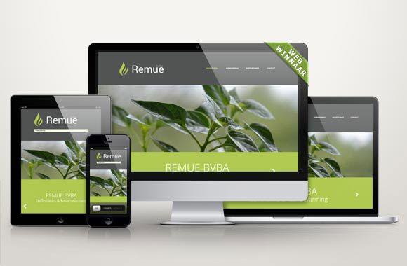 WebWinnaar - Webdesign Remue bvba - Wij maken mooie nieuwe websites of webshops die hoog scoren in Google en andere zoekmachines